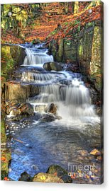 Autumn Stream Acrylic Print