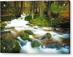 Acrylic Print featuring the photograph Autumn Stream by Maciej Markiewicz