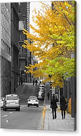 Acrylic Print featuring the photograph Autumn Stroll by Nicola Nobile