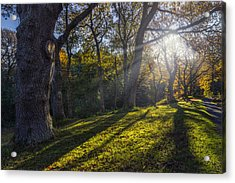 Autumn Stroll V2 Acrylic Print by Ian Mitchell