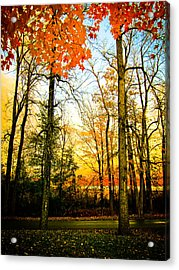 Acrylic Print featuring the photograph Autumn Sunset  by Sara Frank