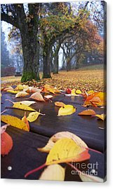Acrylic Print featuring the photograph Autumn Table by Maria Janicki