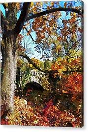 Autumn Tree By Small Stone Bridge Acrylic Print by Susan Savad