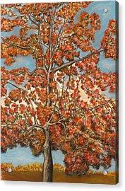 Autumn Tree Acrylic Print by Michael Anthony Edwards