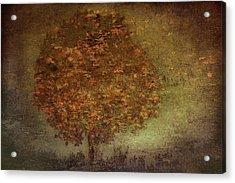Autumn Tree Acrylic Print by Nel Talen