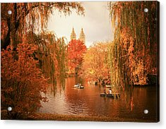 Autumn Trees - Central Park - New York City Acrylic Print by Vivienne Gucwa
