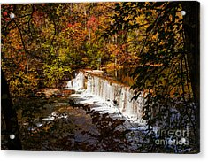 Autumn Trees On Duck River Acrylic Print by Jerry Cowart