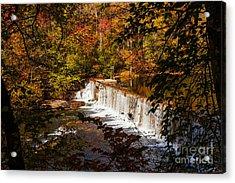 Autumn Trees On Duck River Acrylic Print