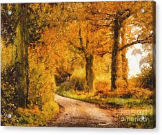 Autumn Trees Acrylic Print by Pixel Chimp