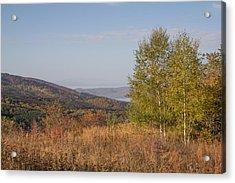 Acrylic Print featuring the pyrography Autumn Vitosha Mountain Bulgaria by Jivko Nakev