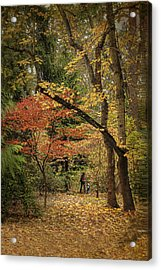 Autumn Walk Acrylic Print by Diane Schuster