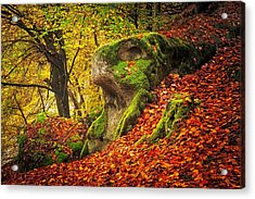Autumn Walk In Forrest Acrylic Print