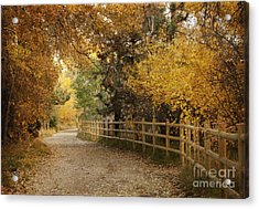 Autumn Walk Acrylic Print by Juli Scalzi