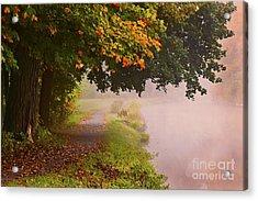 Autumn Walk Acrylic Print by Julie Palyswiat