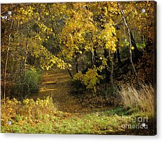 Autumn Walk Acrylic Print by Lutz Baar