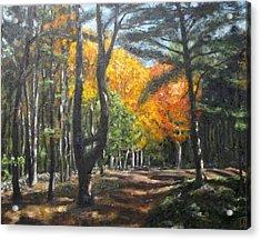 Autumn Walk Acrylic Print