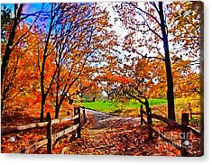 Autumn Walkway Acrylic Print by Nishanth Gopinathan