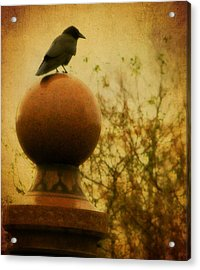 Autumn Wash Acrylic Print by Gothicrow Images