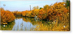 Autumn Weekend On The Delta Acrylic Print by Joseph Coulombe