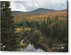 Autumn - White Mountains New Hampshire Acrylic Print by Erin Paul Donovan