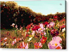 Acrylic Print featuring the painting Autumn Wildflowers Maryland Original Art by G Linsenmayer
