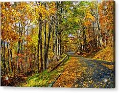 Autumn Winding Road Acrylic Print