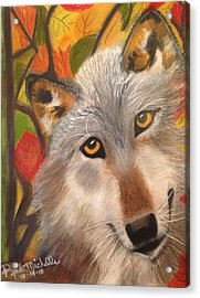Autumn Wolf Acrylic Print by Renee Michelle Wenker