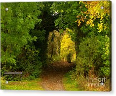 Autumn Woodland Walk Acrylic Print