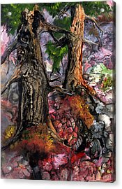 Acrylic Print featuring the painting Autumn Woods by Sherry Shipley