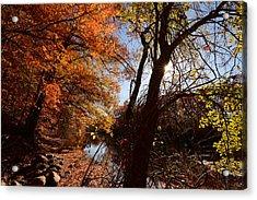 Autumnal Break Acrylic Print