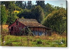 Autumnal Hdr Acrylic Print by Chris Anderson