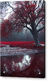 Autumnal Park Acrylic Print by Art of Invi