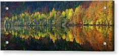 Autumnal Silence Acrylic Print