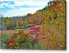 Autumnal Vista Acrylic Print by Frozen in Time Fine Art Photography