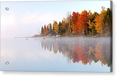 Autumn's Color Show Acrylic Print by Patrick Downey