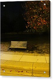 Autumn's Nocturnal Solace Acrylic Print by Guy Ricketts