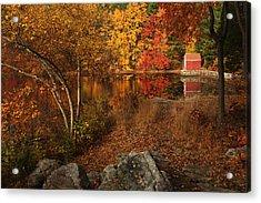 Autumns Path Acrylic Print by Karol Livote