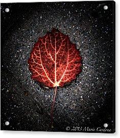 Autumn's Pulse I Acrylic Print by Marie  Cardona