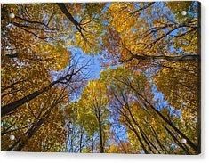 Autumn's Rooftop Acrylic Print