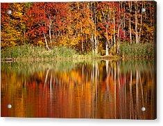 Autumns True Colors Acrylic Print by Karol Livote