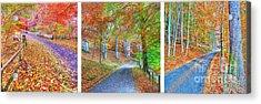 Autumns Way Acrylic Print by John Kelly
