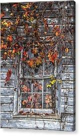 Autumn's Window Curtains Acrylic Print