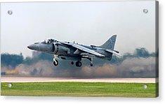 Av-8b Harrier Acrylic Print by Adam Romanowicz