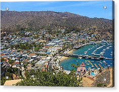 Acrylic Print featuring the photograph Avalon by Kevin Ashley