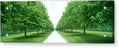 Avenue At Chateau De Modave Ardennes Acrylic Print by Panoramic Images