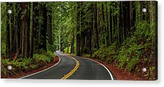 Avenue Of The Giants Passing Acrylic Print