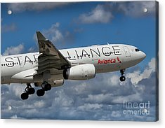 Avianca Star Alliance Airbus A-330 Acrylic Print by Rene Triay Photography