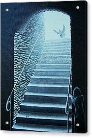 Awakening By A Dove Acrylic Print
