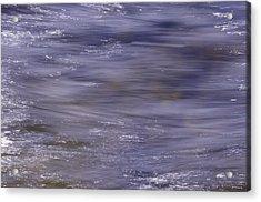 Awakening - Eveil Acrylic Print by Vinci Photo