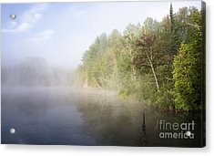 Awaking Acrylic Print by Jola Martysz